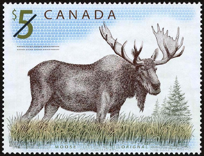 5-dollar Canadian stamp with moose